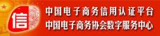 中国电子商务协会数字服务中心
